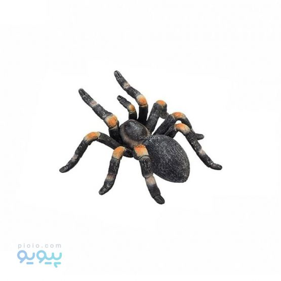 فیگور حیوانات عنکبوت