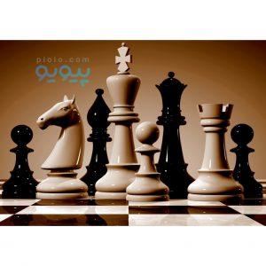 خرید اینترنتی شطرنج و مهره شطرنج در مشهد
